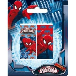 2 Gomas De Borrar Spiderman